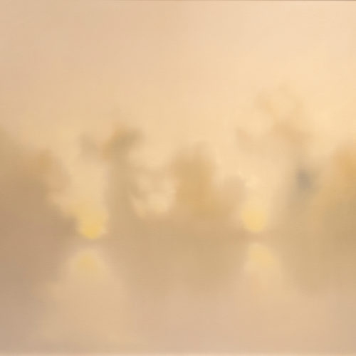 Swamps-in-Mist